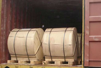 China AISI Pre-Painted Galvanized Steel Coil , Stainless Steel Sheet supplier