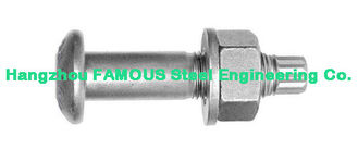 China Plain , Black , Zinc-Plate Screw Bolt Steel Buildings Kits With Hop Dip Galvanizing supplier
