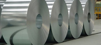 China Heat Resistance Galvanized Steel Coil With Zinc Primer For Household Appliance supplier