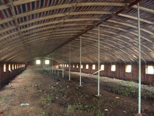 China Reusable Qualified Safety And Utility Fabricated Steel Chicken Shed Systems supplier