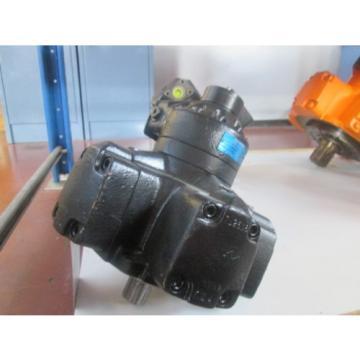Motore Guam Idraulico Denison Calzoni MR160C