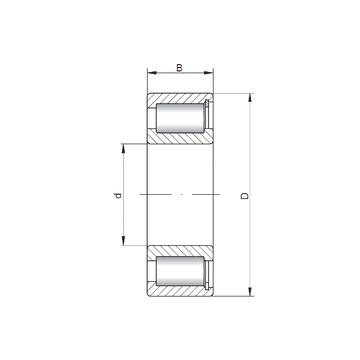 NCF3044 V ISO Cylindrical Roller Bearings