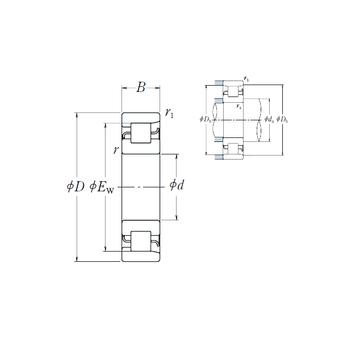 NF 221 NSK Cylindrical Roller Bearings
