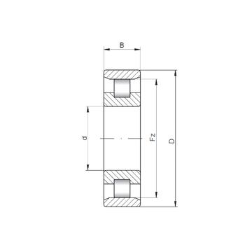 N18/500 ISO Cylindrical Roller Bearings