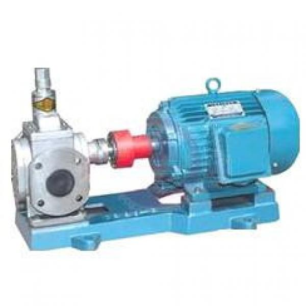 YCB USA Series Arc Gear Pumps #1 image