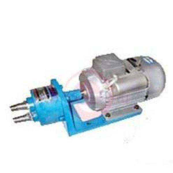 WCB-S Germany Series Gear Pumps #1 image