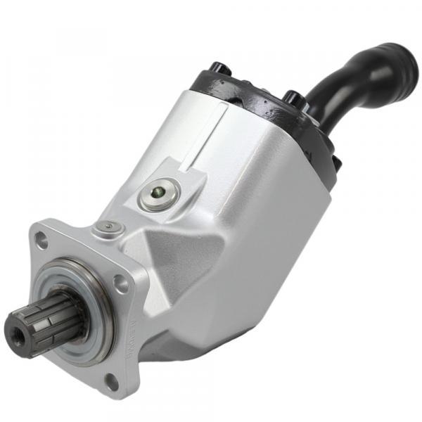 T7ECLP 050 014 1L00 A100 Original T7 series Dension Vane pump Original import #1 image