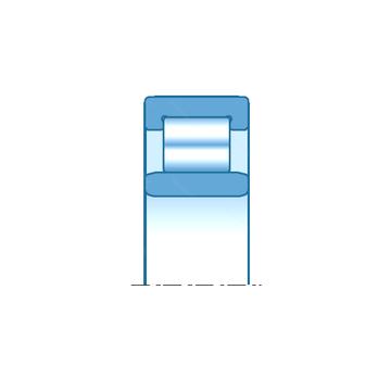 NU2211EG15 SNR Cylindrical Roller Bearings #1 image
